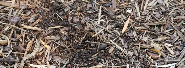2018 Mulch Sale